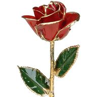 Picture of Red Gold Rose