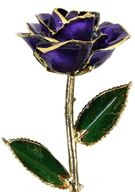 Picture of Lilac Rose
