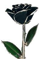 Picture of Platinum Black Rose