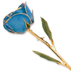 Picture of Blue Rose with gold