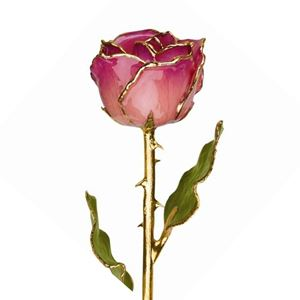 Picture of Gold Pink Rose