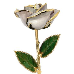 Picture of White Gold Rose