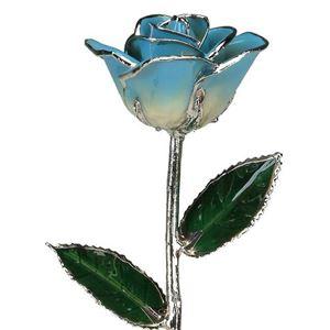 Picture of Decembe-Platinum Rose