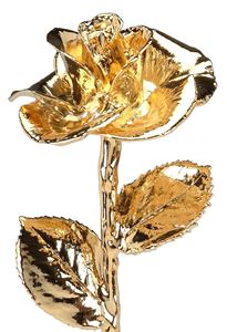 Picture of Gold Dipped Rose