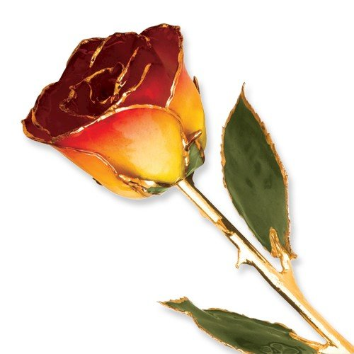Picture of Red and Yellow Rose trimmed in 24k Gold