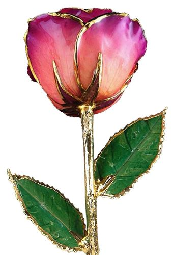 Picture of Pink Amethyst Rose